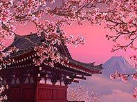 Blooming Sakura 3D screensaver screenshot. Click to enlarge