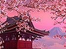 Blühende Sakura