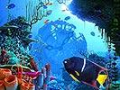 Korallenuhr