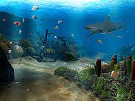 Ocean Dive 3D screensaver screenshot. Click to enlarge