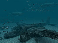 Sharks - Great White 3D screensaver screenshot. Click to enlarge